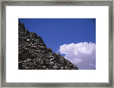 Rainbow Pack Outfitters Framed Print by Soli Deo Gloria Wilderness And Wildlife Photography