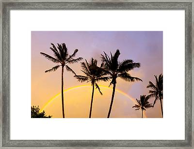 Rainbow Palms Framed Print by Sean Davey