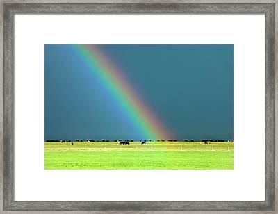 Rainbow Pasture Framed Print by Todd Klassy
