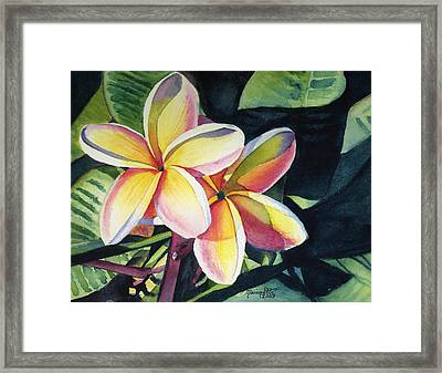 Rainbow Plumeria Framed Print by Marionette Taboniar