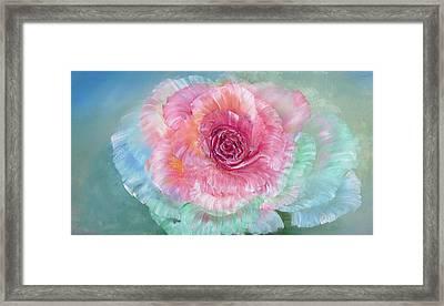 Rainbow Rose Framed Print by Ann Marie Bone