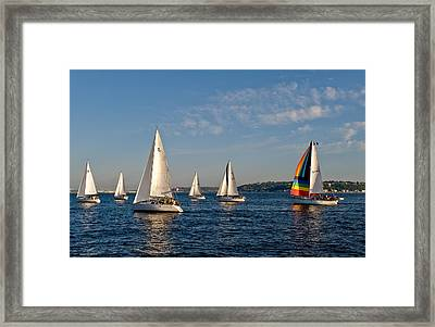 Rainbow Sails Framed Print by Tom Dowd
