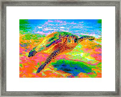 Rainbow Sea Turtle Framed Print