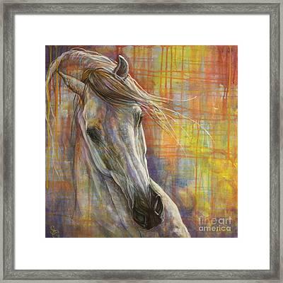 Rainbow  Framed Print by Silvana Gabudean Dobre