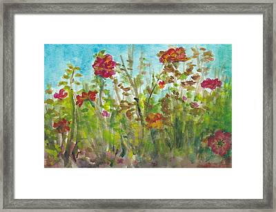 Rainbow Sorbet In Early Fall Framed Print by Lin-Lin Mao
