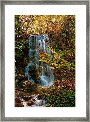 Framed Print featuring the photograph Rainbow Springs Waterfall by Louis Ferreira