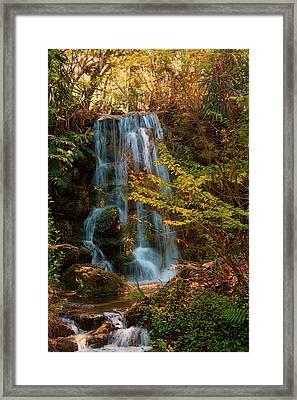 Rainbow Springs Waterfall Framed Print by Louis Ferreira