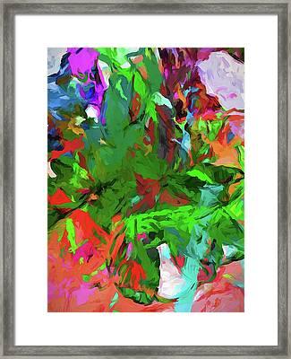 Rainbow Tropic Framed Print
