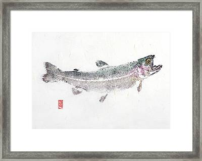 Rainbow Trout #0007 Framed Print
