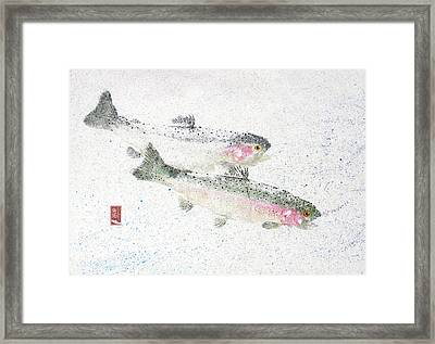 Rainbow Trout Pair #rt0005 Framed Print