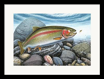 Trout Stream Framed Prints