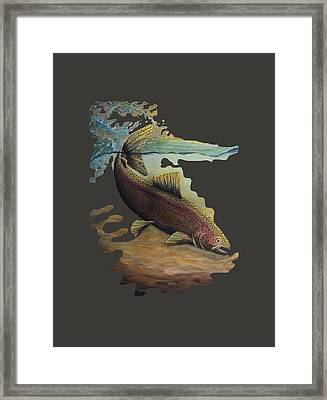 Rainbow Trout Trans Framed Print by Kimberly Benedict