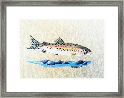 Rainbow Trout Watercolor Painting Framed Print by Scott D Van Osdol