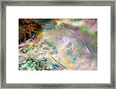 Rainbows And Seaweed Framed Print by Joy Gerow