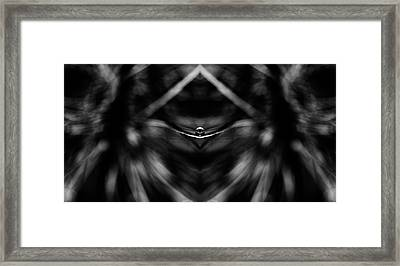 Raindrop Black And White Reflection Framed Print by Pelo Blanco Photo