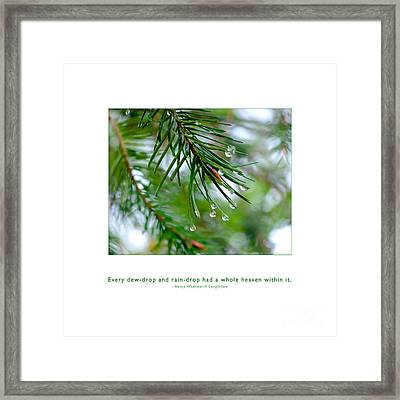 Framed Print featuring the photograph Raindrop Has Whole Heaven by Kristen Fox