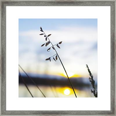 Raindrop Sunrise Framed Print