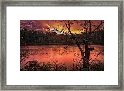 Raindrops On Nullica Framed Print