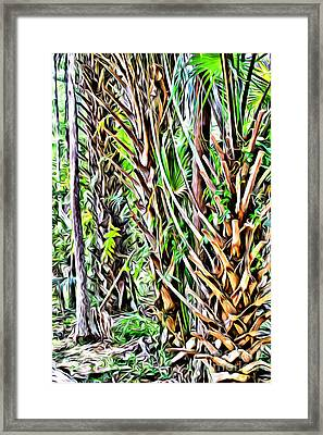 Rainforest Framed Print by Carey Chen