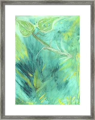 Rainforest Haze Framed Print