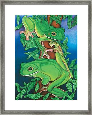Rainforest Rendezvous Framed Print by Lesley Smitheringale