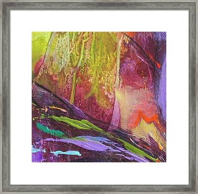 Rainforrest Framed Print