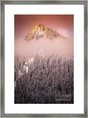 Rainier Winter Scene Framed Print by Inge Johnsson
