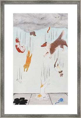 Raining Cats And Dogs Framed Print