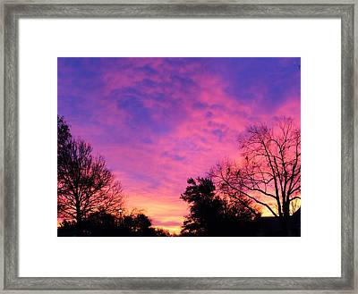 Raintree Sunrise Framed Print by John Adams