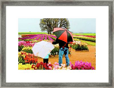 Rainy Day At The Tulip Farm Framed Print