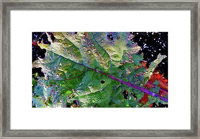 Rainy Day Buggy Kale 2 Framed Print