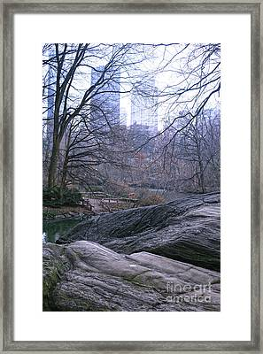 Framed Print featuring the photograph Rainy Day In Central Park by Sandy Moulder
