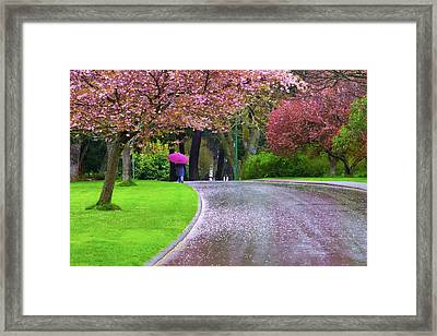 Rainy Day In The Park Framed Print