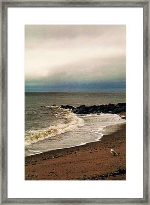 Framed Print featuring the photograph Rainy Day by John Scates
