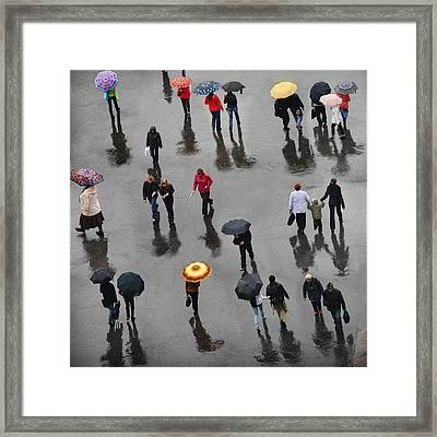 Framed Print featuring the photograph Rainy Day by Vladimir Kholostykh
