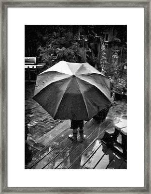 Rainy Day Framed Print by Winnie Chrzanowski