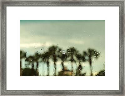 Rainy Daze Framed Print by Christopher L Thomley