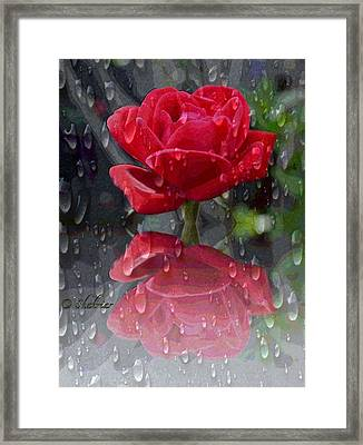 Rainy Reflection  Framed Print