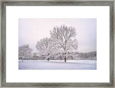 Raising With The Winterfrost Framed Print