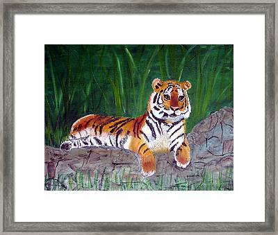 Rajah Framed Print by Marcia Paige