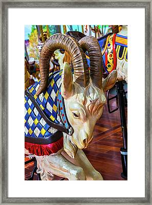 Ram Carrousel Ride Framed Print by Garry Gay