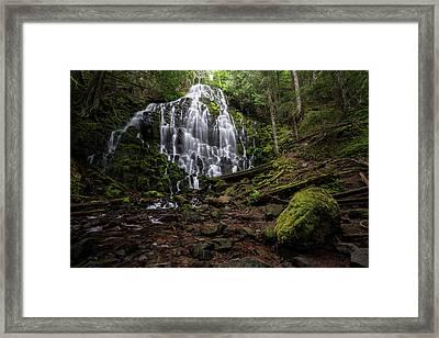 Ramona Falls Framed Print by Brian Bonham