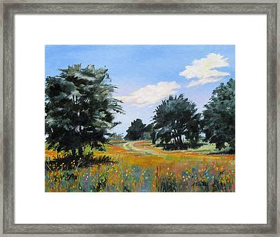Ranch Road Near Bandera Texas Framed Print