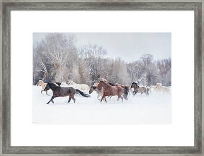 Ranch Run Framed Print