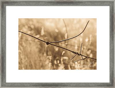 Ranching History At Browns Ranch Framed Print by Marianne Jensen