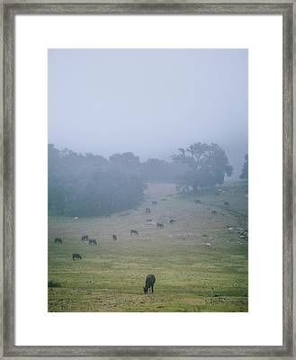 Ranchland Framed Print by Joseph Smith