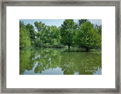 Rankin Reflections 3 Framed Print