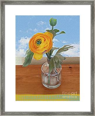 Framed Print featuring the digital art Ranunculus Spring by Alexis Rotella