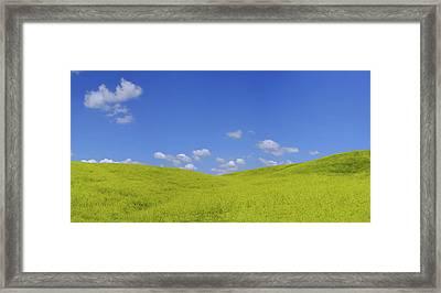 Rapeseed Landscape Framed Print by Marius Sipa