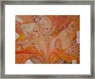 Raphsody On An Iris Framed Print by Pamela Mccabe